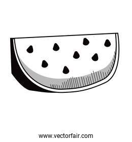 fresh watermelon vegetable drawn icon