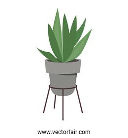 home plant in gray ceramic pot decor on metal stand