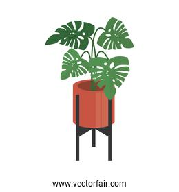 home plant in orange ceramic pot on metal stand