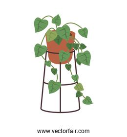home plant in orange ceramic pot decor on metal stand
