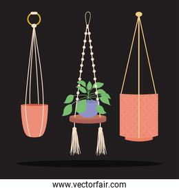 icon set of decorative plant and macrame hangers with pots for plants, colorful design