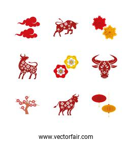 collection of nine chinese new year 2021 set icons