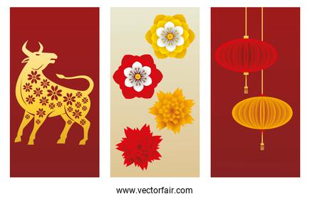 chinese new year 2021 ox and lamps hanging with flowers