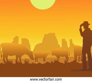 wild west sunset scene with cowboy and cows