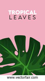 tropical leaves lettering poster with leaf
