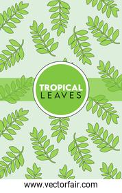 tropical leaves lettering poster with leafs pattern and circular frame