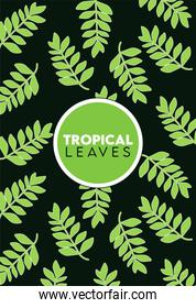 tropical leaves lettering poster with leafs pattern in black background