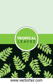 tropical leaves lettering poster with leafs in green circular frame