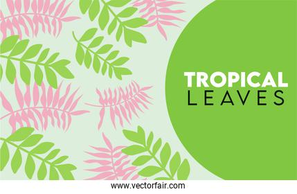 tropical leaves lettering poster with green and pink leafs