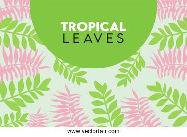tropical leaves lettering poster with green and pink leafs circular frame