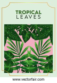 tropical leaves lettering poster with leafs in green background