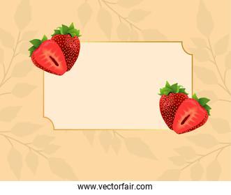 fresh strawberries fruits in square frame