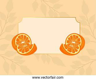 citrus fruit poster with oranges in frame