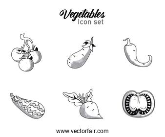 bundle of six vegetables with lettering set icons