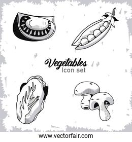 bundle of four vegetables with lettering set icons