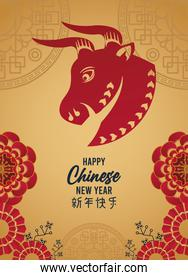 happy chinese new year lettering card with red ox in golden background