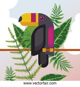 wild toucan bird animal exotic character with leafs