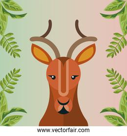 wild reindeer animal with leafs nature scene