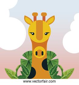 wild giraffe animal nature character with leafs