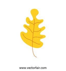 yellow color leave nature icon