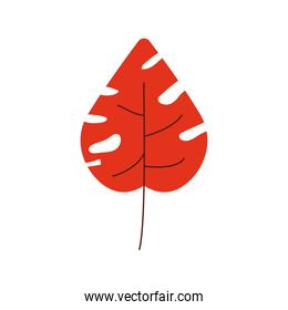 red color leave nature icon