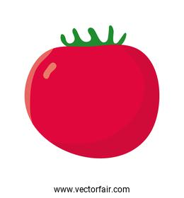 tomato vegetables healthy isolated icon