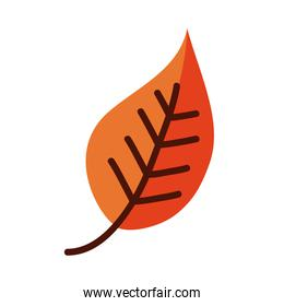 leaf line and fill style icon vector design