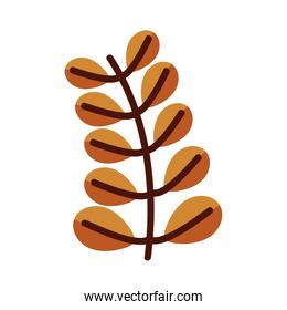 leaf with ten leaves line and fill style icon vector design