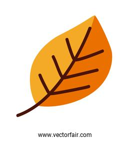 Decoration autumn leaf line and fill style symbol vector design