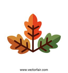 leaf with three leaves line and fill style icon vector design