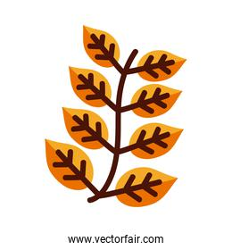 leaf with eight leaves line and fill style icon vector design