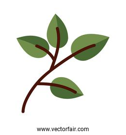leaf with four leaves line and fill style icon vector design