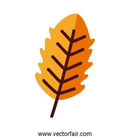 Plant leaf line and fill style symbol vector design