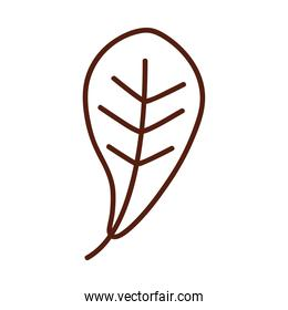 leaf line style icon vector