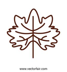 autumn maple leaf line style icon vector design