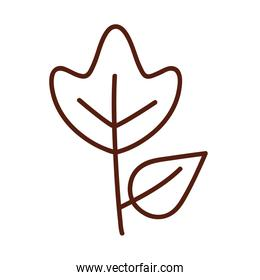 Natural leaf with two leaves line style icon vector design