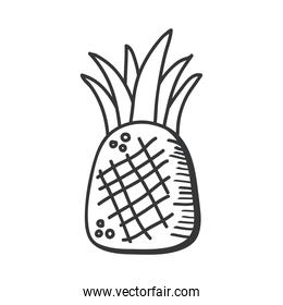 pineapple fruit hand draw and line style icon vector design