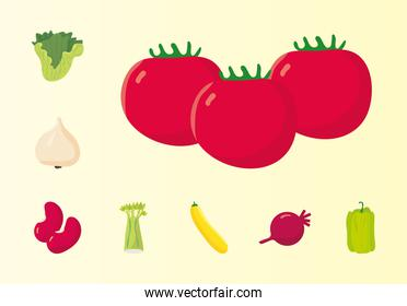 bundle of eight vegetables healthy food icons