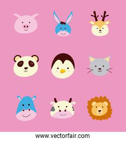 bundle of nine cute little animals heads characters