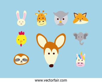 bundle of nine little animals heads characters