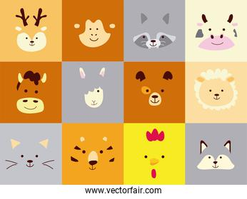 bundle of twelve cute little animals heads characters