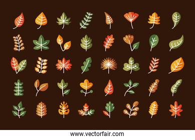 leaves line and fill style icon collection vector design