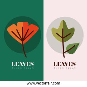 leaves line and fill style symbol collection vector design