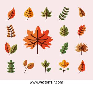 leaves line and fill style set of icons vector design