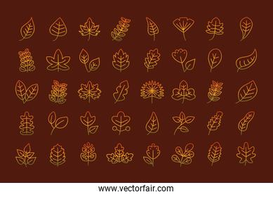 leaves line style icon collection vector design
