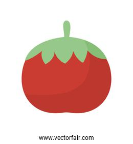 tomato with a red color on a white background