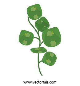 branch with leaves green nature isolated icons