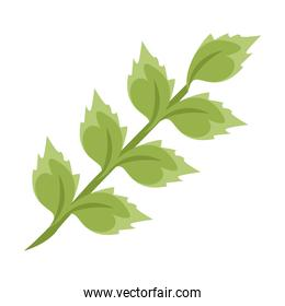 branch with leaves plants nature isolated icons