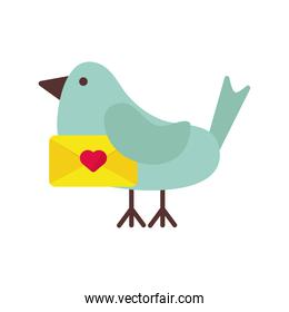 dove with heart love in envelope valentines day icon