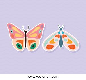 two butterflies hand drawn style on purple background